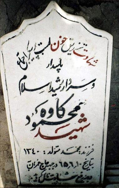 محمود کاوه