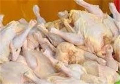 تعیین قیمت جدید مرغ به بعد از رمضان موکول شد؛ آغاز توزیع ذخایر مرغ