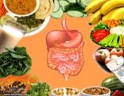 زود هضمها و دیر هضمهای غذایی
