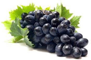 آشنایی با پنج ماده غذایی مفید برای کاهش تری گلیسرید خون