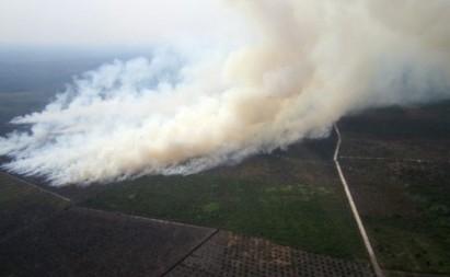 باران مصنوعی؛ راه حل جدید اندونزی برای مهار آتشسوزی
