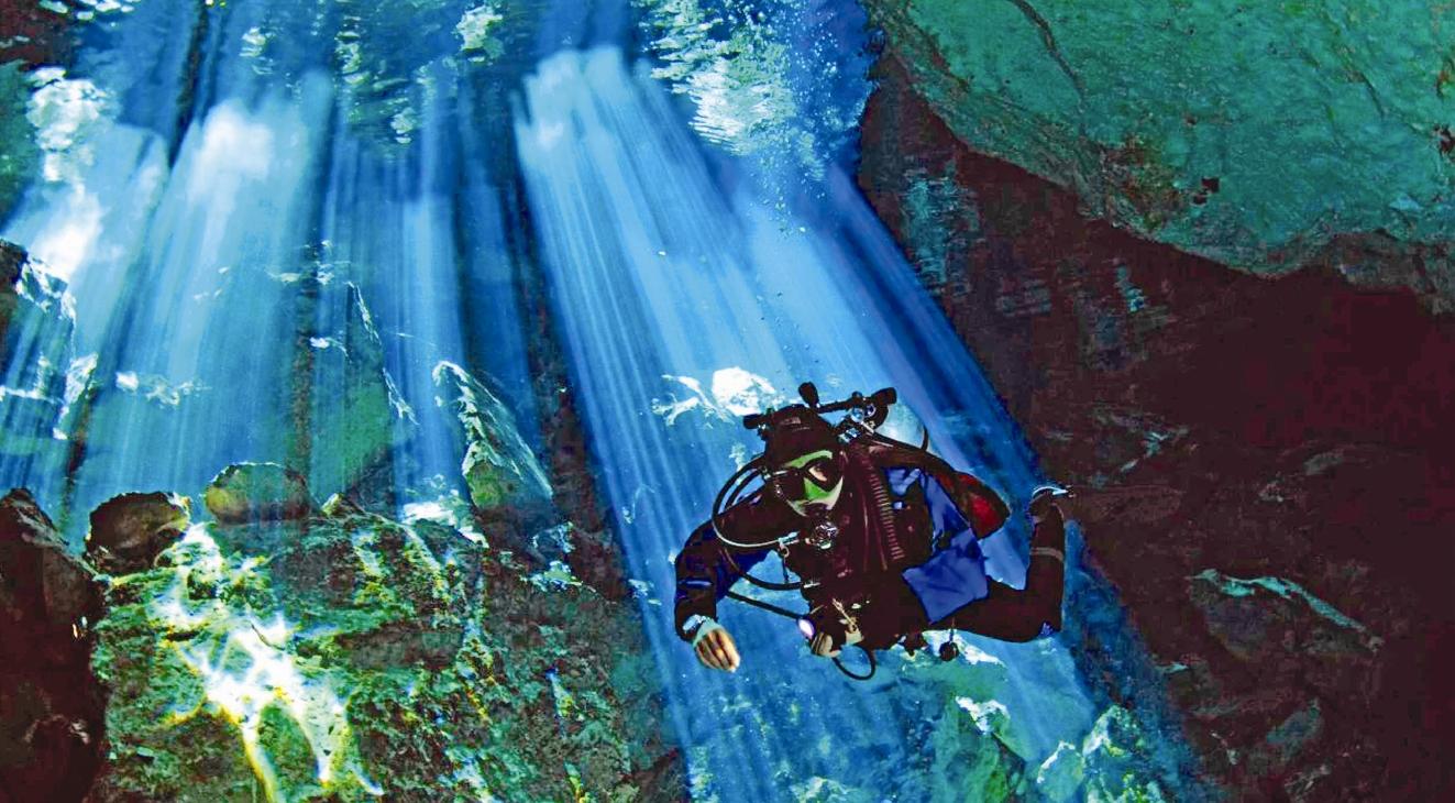 کشف جنگل 50هزار ساله در آبهای خلیج مکزیک