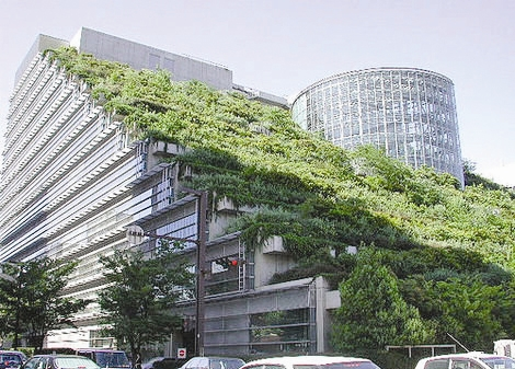 تأکید اتحادیه حفاظت از طبیعت برگسترش فضای سبز