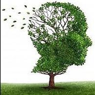 در آیندهای نزدیک، بیماری زوال عقل از بین میرود