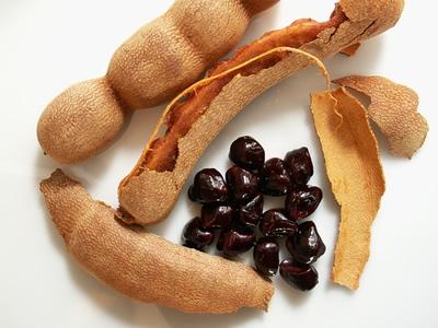 آشنایی با خوردنیهای مفید برای پیشگیری از گرمازدگی
