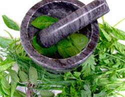آشنایی با چند گیاه موثر برای درمان اضطراب