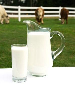مصرف زیاد شیر گاو در کودکان و کم خونی