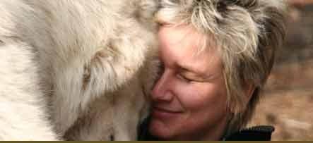 عکس روز / آرامش در کنار گرگها