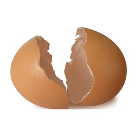 آشنایی با کاربردهای عجیب از پوست تخم مرغ