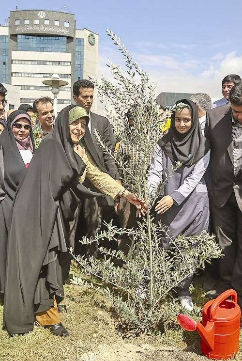 کاشت درخت صلح در پارک پردیسان