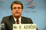مدیر کل جدید سازمان جهانی تجارت