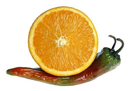 حیواناتی از جنس میوه و سبزی