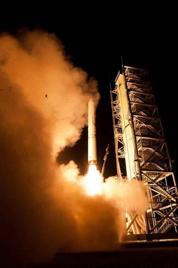 قورباغه هم فضانوردی کرد!
