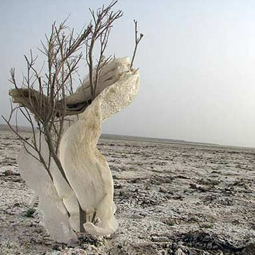 صدای مردم ایران برای نجات تالاب هامون را به جهان می رسانم