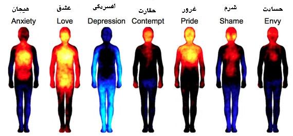 احساسات انسانی