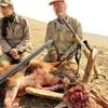استقبال مجلس ازطرح شکار ممنوع