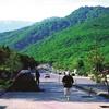 راهنمایی برای گشت وگذار در منطقه جنگلی ناهارخوران در استان گلستان