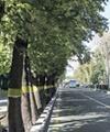 نصب نماد تمامی استانها در یک بوستان تهران