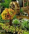 ششمین نمایشگاه گل و گیاه تهران آغاز به کار کرد