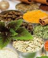 نگاه وزارت بهداشت به صنعت داروهای گیاهی مثبت است