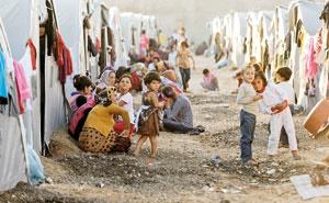عراق و سوریه ۱۳.۵ میلیون آواره جنگی دارند