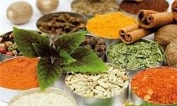 با گیاهان دارویی خشکی پوست را درمان کنید