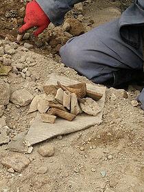 کشف آثار ۴۰۰ ساله در تهران