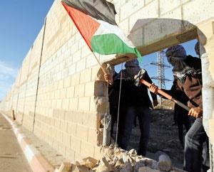 موج فلسطینی در قاره سبز