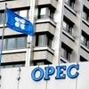 سقف تولید نفت اوپک ثابت ماند ؛ احتمال سقوط دوباره طلای سیاه