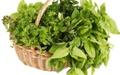 آشنایی با نکاتی مهم درباره خرید و انگلزدایی سبزیجات