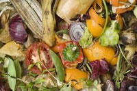 ضایعات ۳۰ درصدی میوه و ترهبار به دلیل حمل و نقل نامناسب