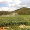 خطر آبی و خاکی درکمین امنیت غذایی