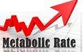 چطور سرعت متابولیسم بر وزن شما تاثیر میگذارد؟
