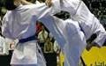 ۳ طلا، ۲ نقره و ۲ برنز برای کاراتهکاهای سبک شوتوکان jska در ترکیه