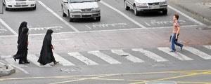 خیابان ولیعصر نخستین محور میزبان کمپین آسمان آبی زمین پاک