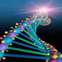 ترکیب ژن انسان و حیوان مفید یا مضر؟