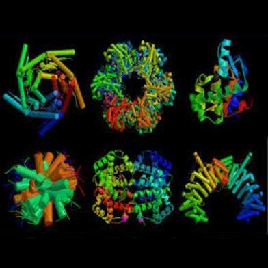 شناسایی پروتئین عامل بروز اگزما