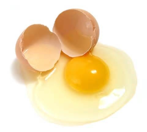 تخم مرغ مصنوعی ساخته شد