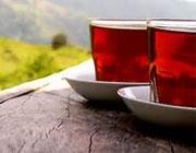 چای ساده بنوشیم یا چای عطری؟