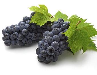 تسکین درد آرتروز با مصرف انگور