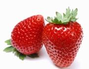 میوههایی که طبابت میکنند