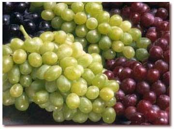 آشنایی با خواص رنگهای متنوع انگور