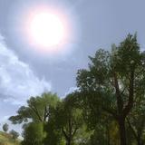 نور خورشید مانند هروئین اعتیادآور است