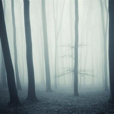 انتظاری شبیه مه