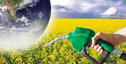 جایگزینی دو درصد بیودیزل و ۵ درصد بیواتانول با گوگرد و MTBE در سوخت مصرفی کشور