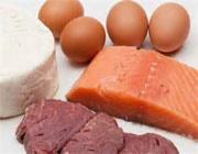 رژیم پرپروتئین
