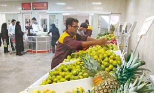 تهران صاحب ۲۴۰ میدان میوه و ترهبار میشود