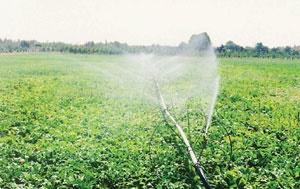 آماده باش کشاورزان برای مقابله با کم آبی