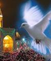 برپایی جشنهای مردمی دهه کرامت در ۱۲۰۰ مسجد پایتخت