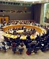 شورای امنیت، منفعتطلب و کوتهبین است